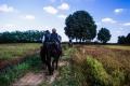3.Varese e la tradizione dei cavalli